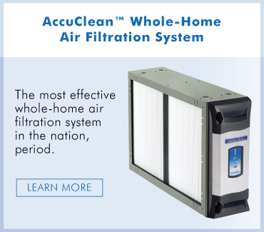 What Is an Air Purifier and Does My Home Need One?